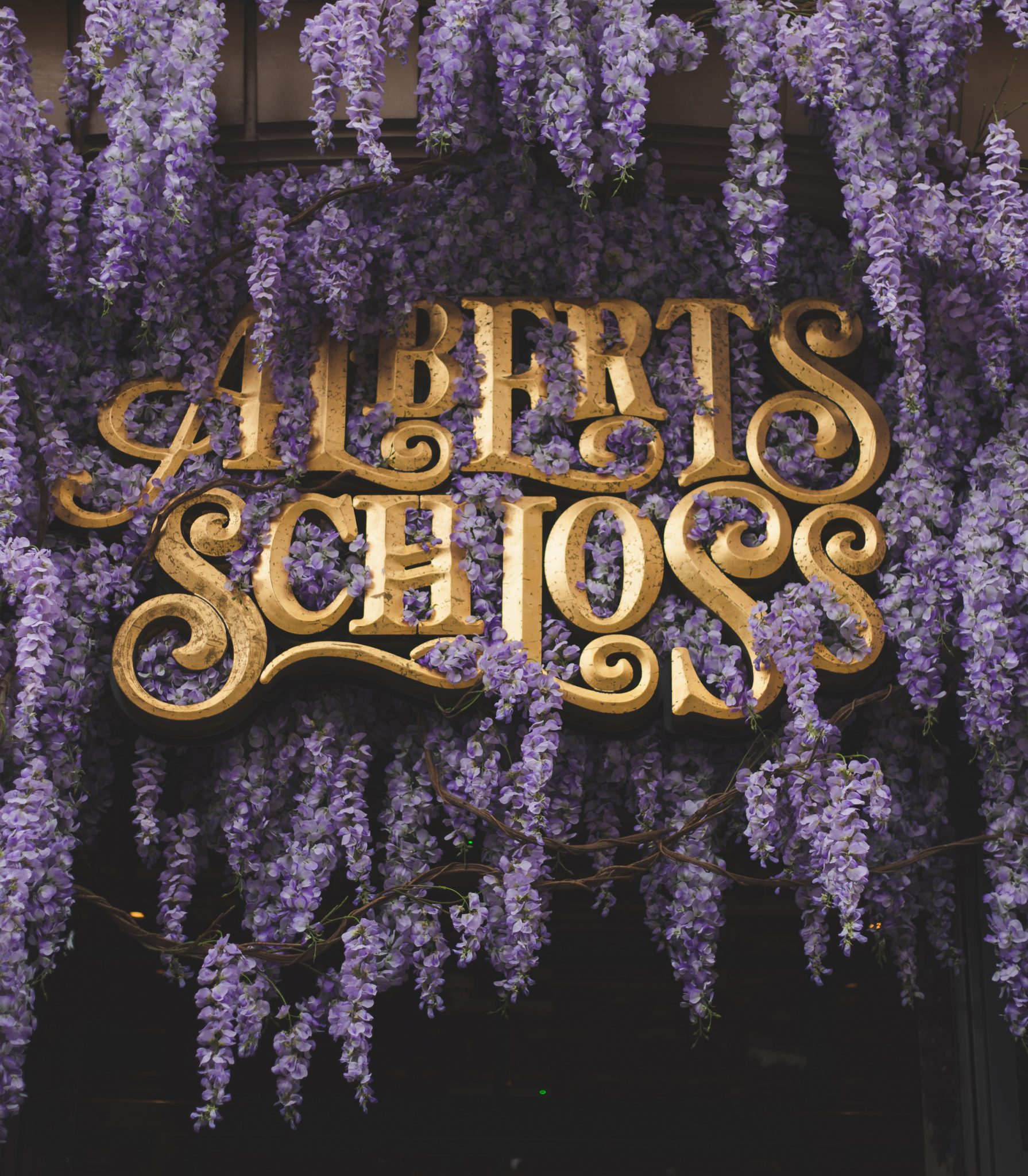 Wisteria Extravaganza— Alberts Schloss